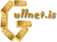 //www.gullnet.is/wp-content/uploads/2020/12/gullnet-logo2-e1606828167595.png